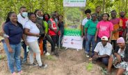 TWU OF TUC PLANTS TREES TO GREEN THE ENVIRONMENT
